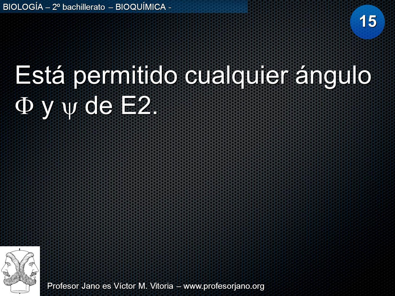 Profesor Jano es Víctor M. Vitoria – www.profesorjano.org BIOLOGÍA – 2º bachillerato – BIOQUÍMICA - Está permitido cualquier ángulo y de E2. 15