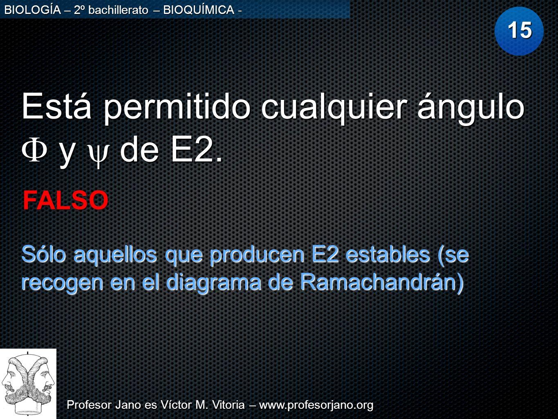 Profesor Jano es Víctor M. Vitoria – www.profesorjano.org BIOLOGÍA – 2º bachillerato – BIOQUÍMICA - Está permitido cualquier ángulo y de E2. 15 FALSO