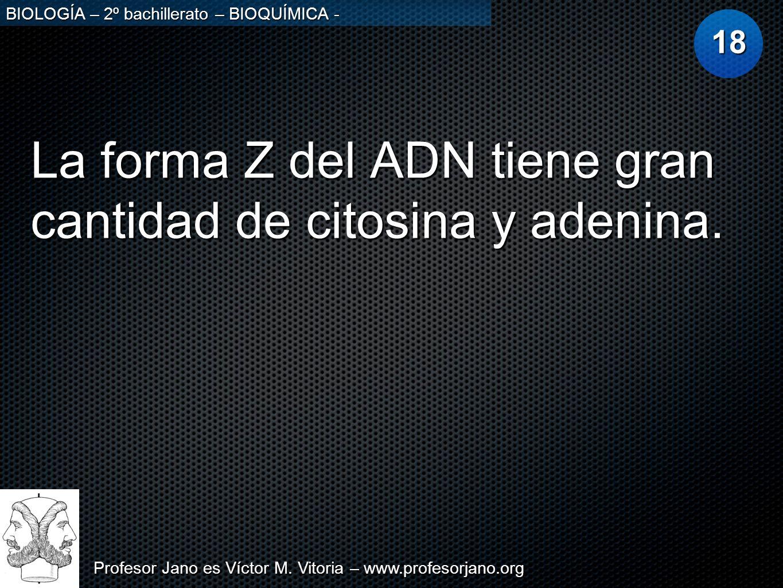 Profesor Jano es Víctor M. Vitoria – www.profesorjano.org BIOLOGÍA – 2º bachillerato – BIOQUÍMICA - La forma Z del ADN tiene gran cantidad de citosina
