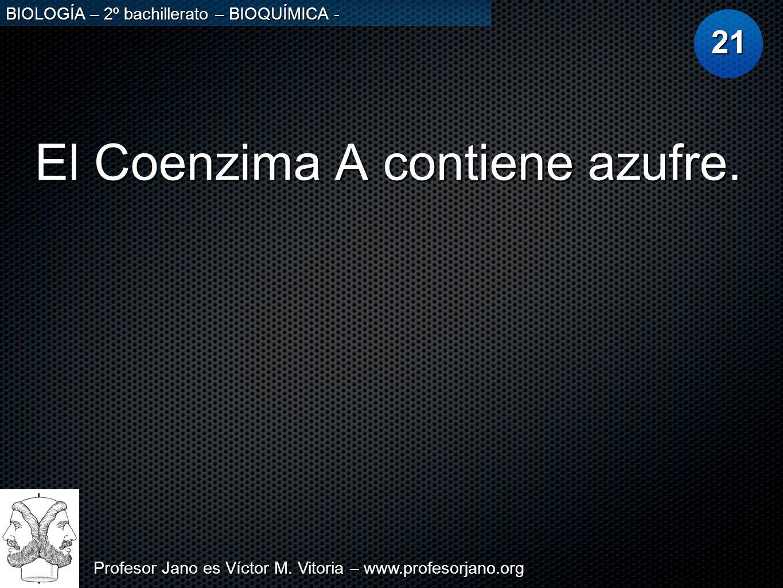 Profesor Jano es Víctor M. Vitoria – www.profesorjano.org BIOLOGÍA – 2º bachillerato – BIOQUÍMICA - El Coenzima A contiene azufre. 21
