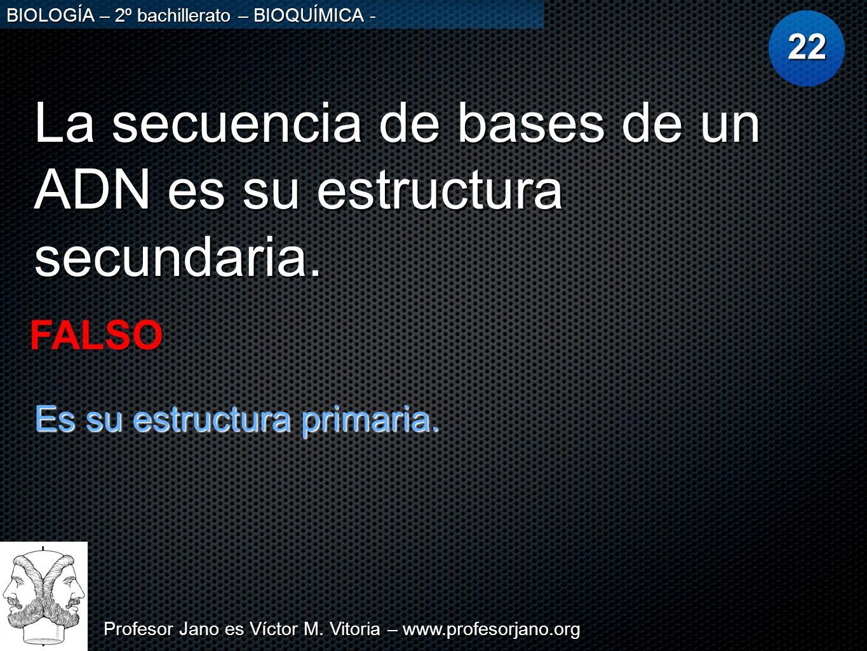 Profesor Jano es Víctor M. Vitoria – www.profesorjano.org BIOLOGÍA – 2º bachillerato – BIOQUÍMICA - La secuencia de bases de un ADN es su estructura s
