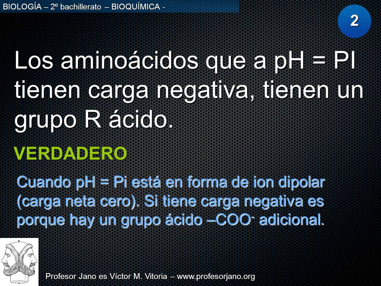 Profesor Jano es Víctor M. Vitoria – www.profesorjano.org BIOLOGÍA – 2º bachillerato – BIOQUÍMICA - Los aminoácidos que a pH = PI tienen carga negativ