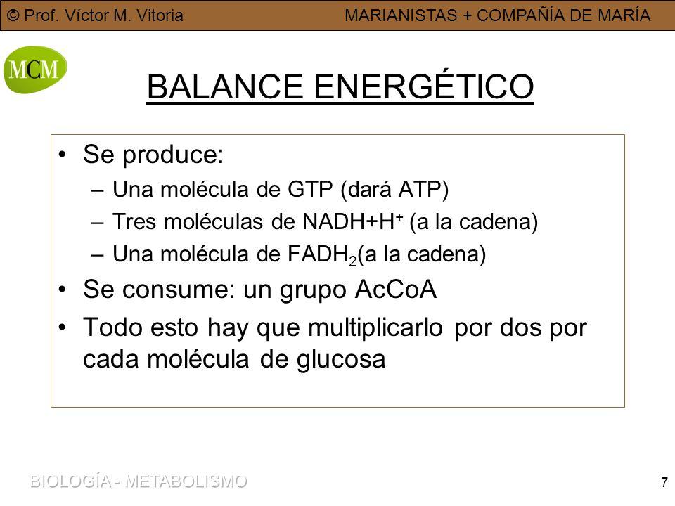 7 BALANCE ENERGÉTICO Se produce: –Una molécula de GTP (dará ATP) –Tres moléculas de NADH+H + (a la cadena) –Una molécula de FADH 2 (a la cadena) Se co