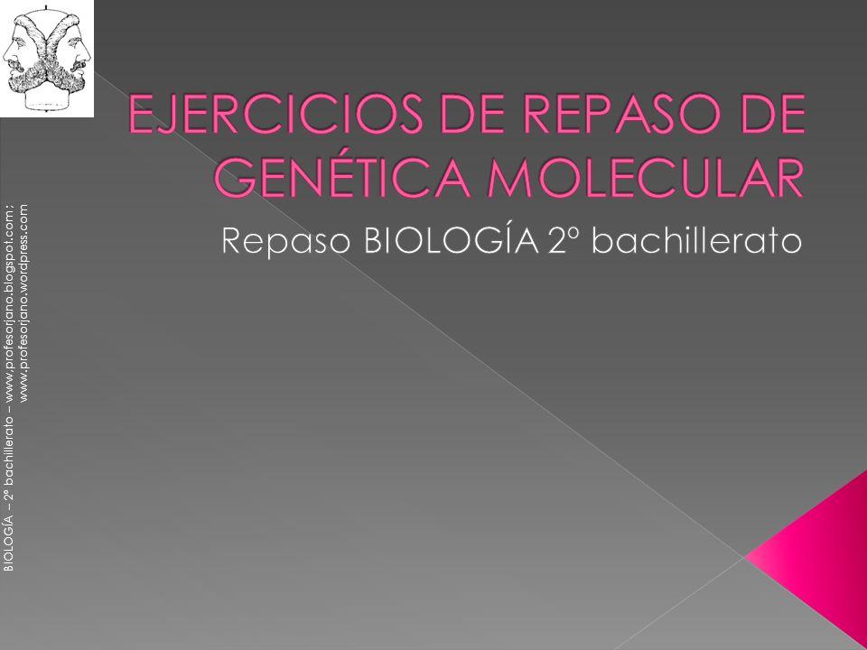 BIOLOGÍA – 2º bachillerato – www,profesorjano.blogspot.com ; www.profesorjano.wordpress.com