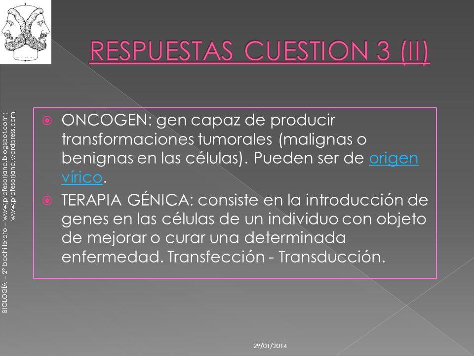 BIOLOGÍA – 2º bachillerato – www,profesorjano.blogspot.com ; www.profesorjano.wordpress.com 29/01/2014 ONCOGEN: gen capaz de producir transformaciones