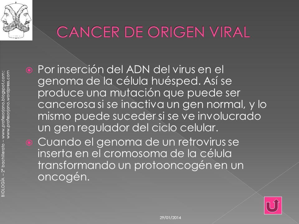 BIOLOGÍA – 2º bachillerato – www,profesorjano.blogspot.com ; www.profesorjano.wordpress.com 29/01/2014 Por inserción del ADN del virus en el genoma de