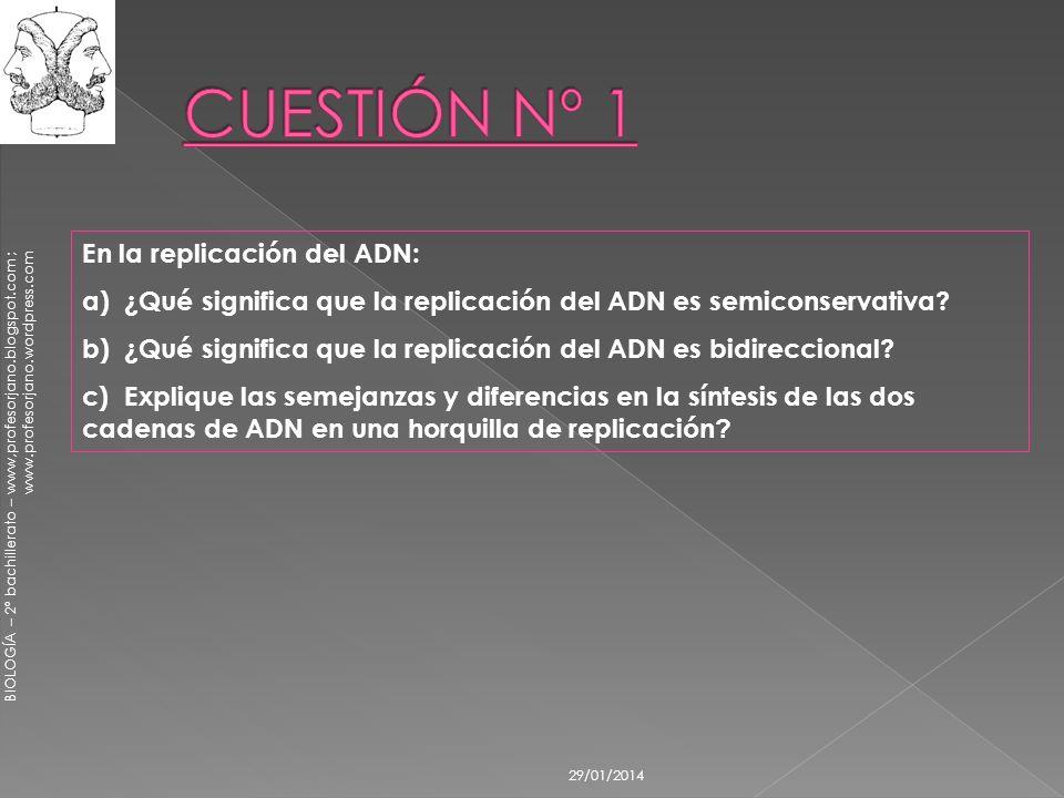 29/01/2014 En la replicación del ADN: a) ¿Qué significa que la replicación del ADN es semiconservativa? b) ¿Qué significa que la replicación del ADN e