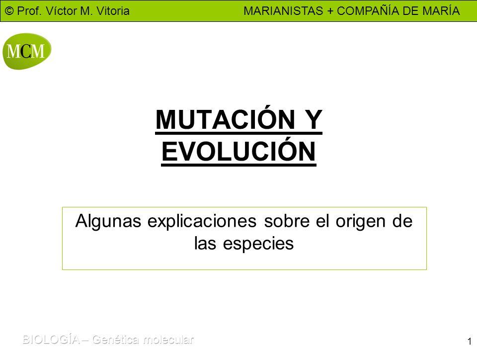 © Prof. Víctor M. Vitoria MARIANISTAS + COMPAÑÍA DE MARÍA 1 MUTACIÓN Y EVOLUCIÓN Algunas explicaciones sobre el origen de las especies