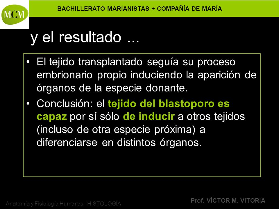 BACHILLERATO MARIANISTAS + COMPAÑÍA DE MARÍA Prof. VÍCTOR M. VITORIA Anatomía y Fisiología Humanas - HISTOLOGÍA y el resultado... El tejido transplant