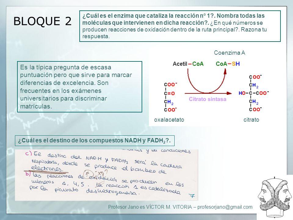 Profesor Jano es VÍCTOR M. VITORIA – profesorjano@gmail.com BLOQUE 2 ¿Cuál es el enzima que cataliza la reacción nº 1?. Nombra todas las moléculas que