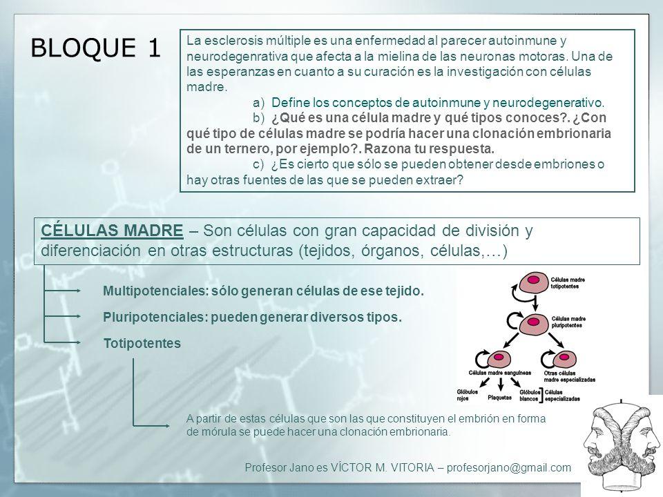 Profesor Jano es VÍCTOR M. VITORIA – profesorjano@gmail.com BLOQUE 1 La esclerosis múltiple es una enfermedad al parecer autoinmune y neurodegenrativa
