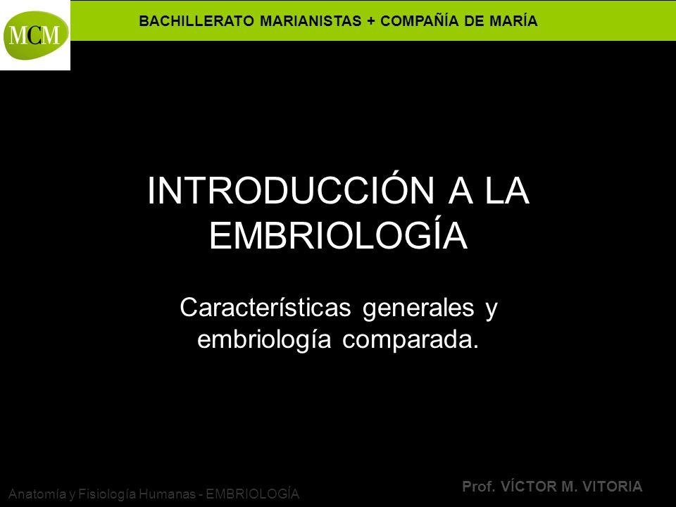 BACHILLERATO MARIANISTAS + COMPAÑÍA DE MARÍA Prof. VÍCTOR M. VITORIA Anatomía y Fisiología Humanas - EMBRIOLOGÍA INTRODUCCIÓN A LA EMBRIOLOGÍA Caracte