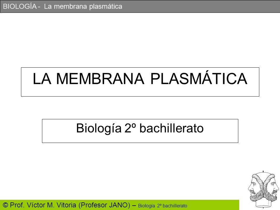 BIOLOGÍA - La membrana plasmática © Prof. Víctor M. Vitoria (Profesor JANO) – Biología 2º bachillerato LA MEMBRANA PLASMÁTICA Biología 2º bachillerato