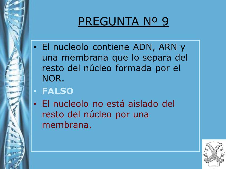 PREGUNTA Nº 9 El nucleolo contiene ADN, ARN y una membrana que lo separa del resto del núcleo formada por el NOR. FALSO El nucleolo no está aislado de