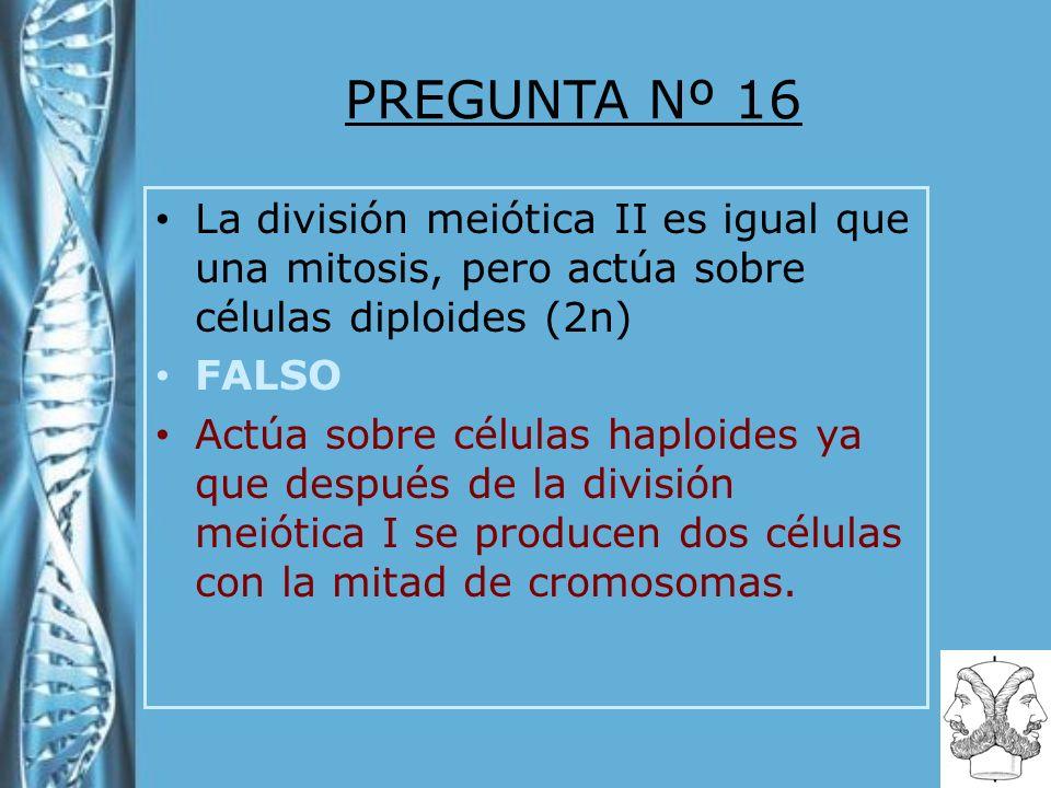 PREGUNTA Nº 16 La división meiótica II es igual que una mitosis, pero actúa sobre células diploides (2n) FALSO Actúa sobre células haploides ya que de