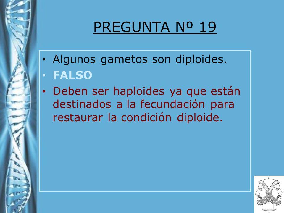 PREGUNTA Nº 19 Algunos gametos son diploides. FALSO Deben ser haploides ya que están destinados a la fecundación para restaurar la condición diploide.