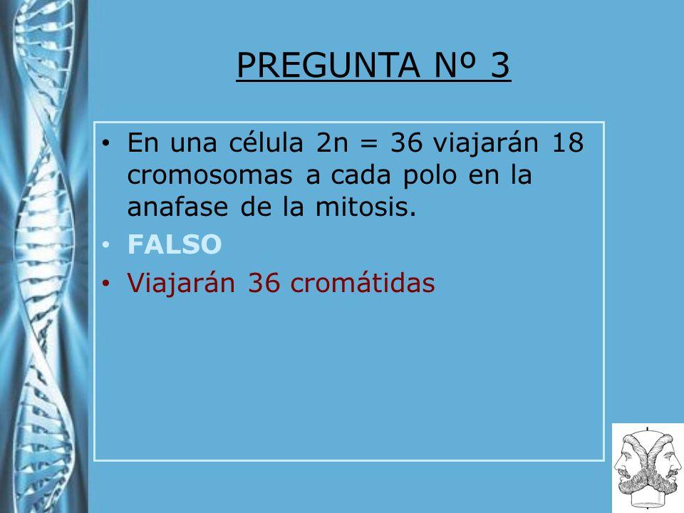 PREGUNTA Nº 3 En una célula 2n = 36 viajarán 18 cromosomas a cada polo en la anafase de la mitosis. FALSO Viajarán 36 cromátidas