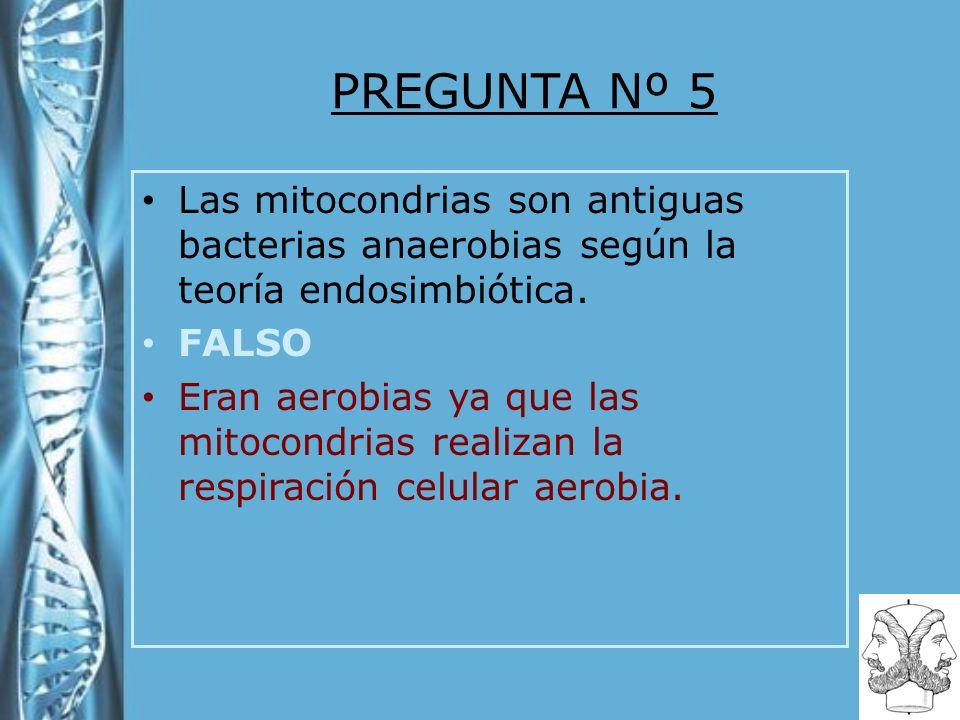 PREGUNTA Nº 5 Las mitocondrias son antiguas bacterias anaerobias según la teoría endosimbiótica. FALSO Eran aerobias ya que las mitocondrias realizan