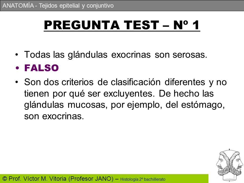 ANATOMÍA - Tejidos epitelial y conjuntivo © Prof. Víctor M. Vitoria (Profesor JANO) – Histología 2º bachillerato PREGUNTA TEST – Nº 1 Todas las glándu