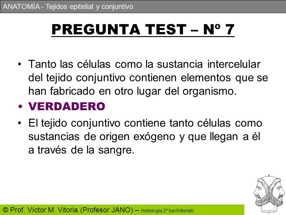 ANATOMÍA - Tejidos epitelial y conjuntivo © Prof. Víctor M. Vitoria (Profesor JANO) – Histología 2º bachillerato PREGUNTA TEST – Nº 7 Tanto las célula
