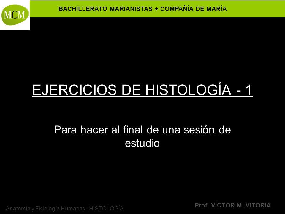 BACHILLERATO MARIANISTAS + COMPAÑÍA DE MARÍA Prof. VÍCTOR M. VITORIA Anatomía y Fisiología Humanas - HISTOLOGÍA EJERCICIOS DE HISTOLOGÍA - 1 Para hace