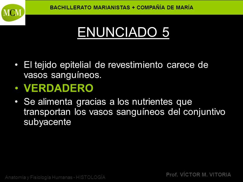 BACHILLERATO MARIANISTAS + COMPAÑÍA DE MARÍA Prof. VÍCTOR M. VITORIA Anatomía y Fisiología Humanas - HISTOLOGÍA ENUNCIADO 5 El tejido epitelial de rev