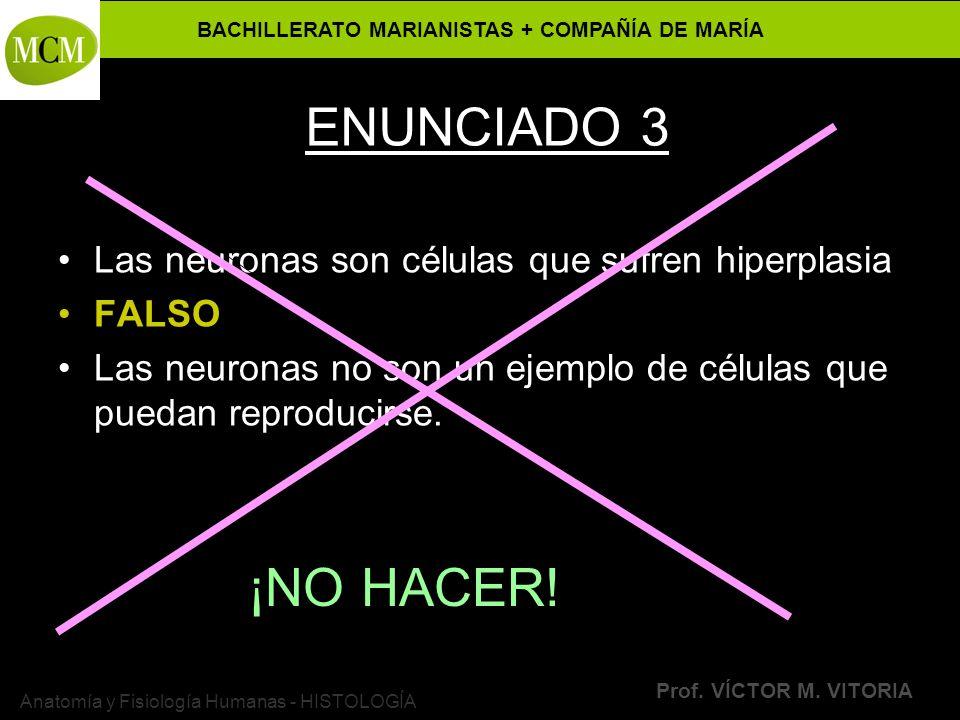 BACHILLERATO MARIANISTAS + COMPAÑÍA DE MARÍA Prof. VÍCTOR M. VITORIA Anatomía y Fisiología Humanas - HISTOLOGÍA ENUNCIADO 3 Las neuronas son células q