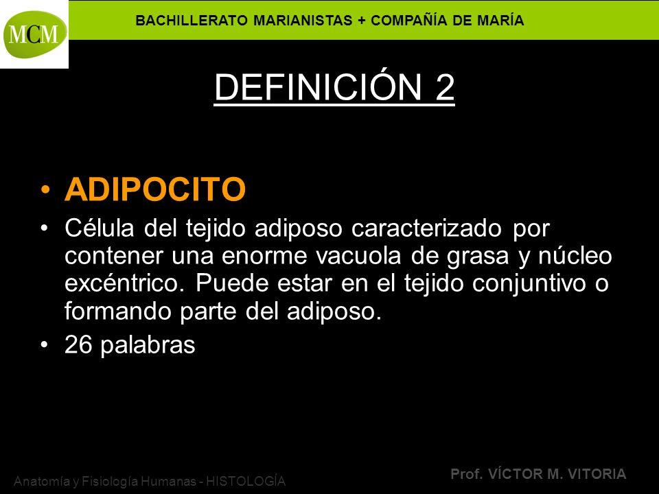 BACHILLERATO MARIANISTAS + COMPAÑÍA DE MARÍA Prof. VÍCTOR M. VITORIA Anatomía y Fisiología Humanas - HISTOLOGÍA DEFINICIÓN 2 ADIPOCITO Célula del teji