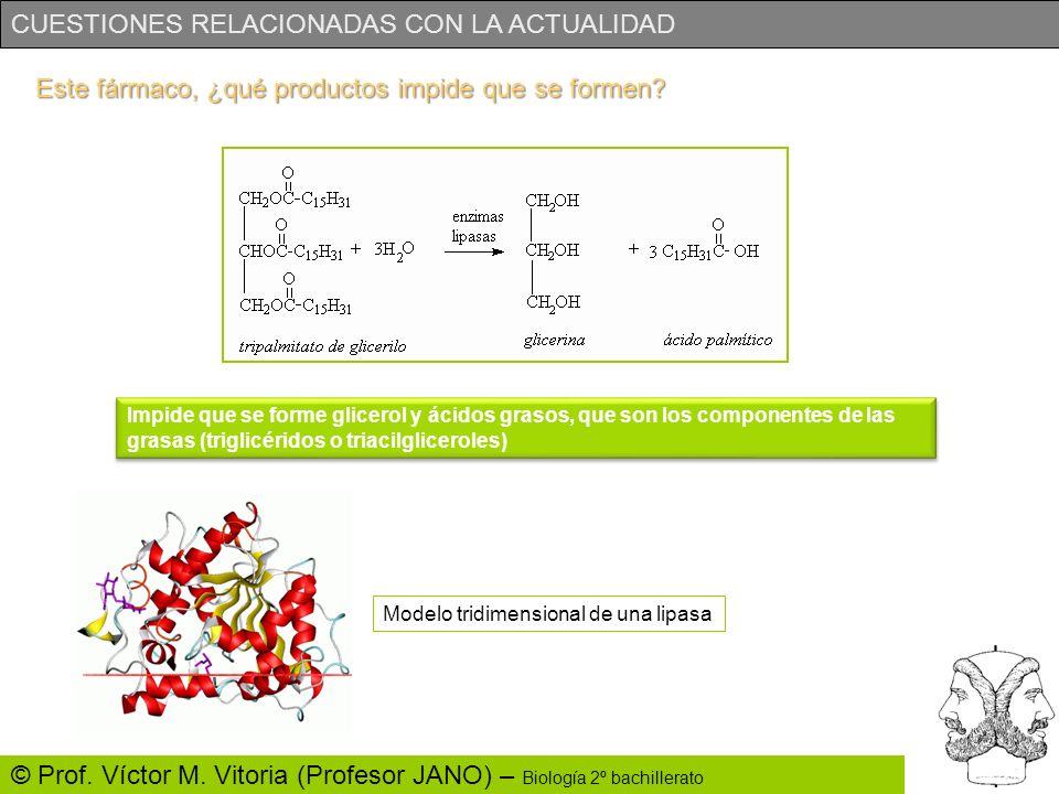 CUESTIONES RELACIONADAS CON LA ACTUALIDAD © Prof. Víctor M. Vitoria (Profesor JANO) – Biología 2º bachillerato Este fármaco, ¿qué productos impide que