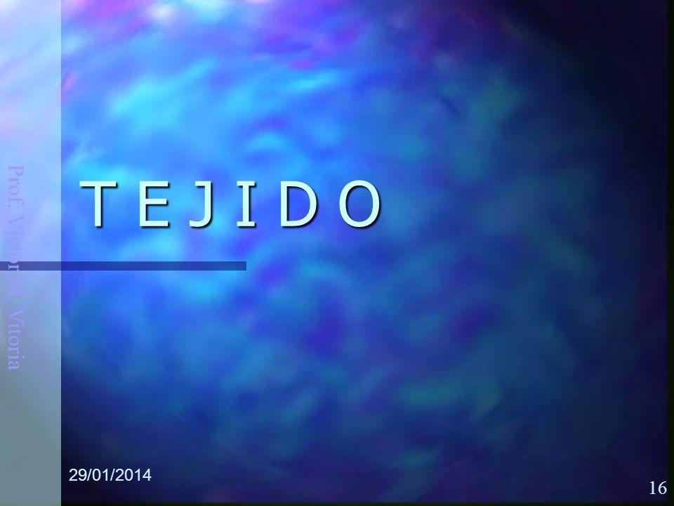 Prof. Víctor M. Vitoria 29/01/2014 16 T E J I D O