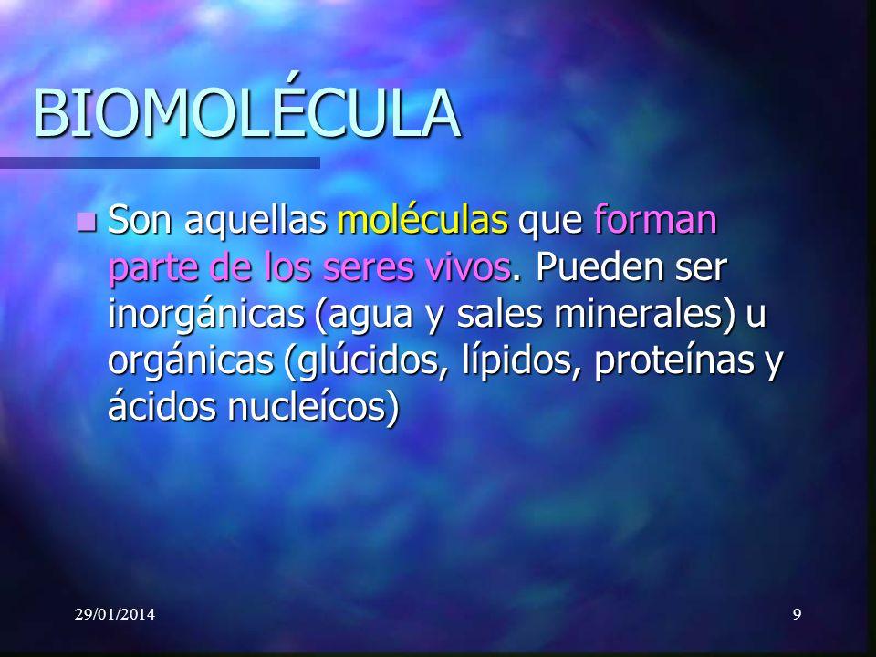 9 BIOMOLÉCULA Son aquellas moléculas que forman parte de los seres vivos.
