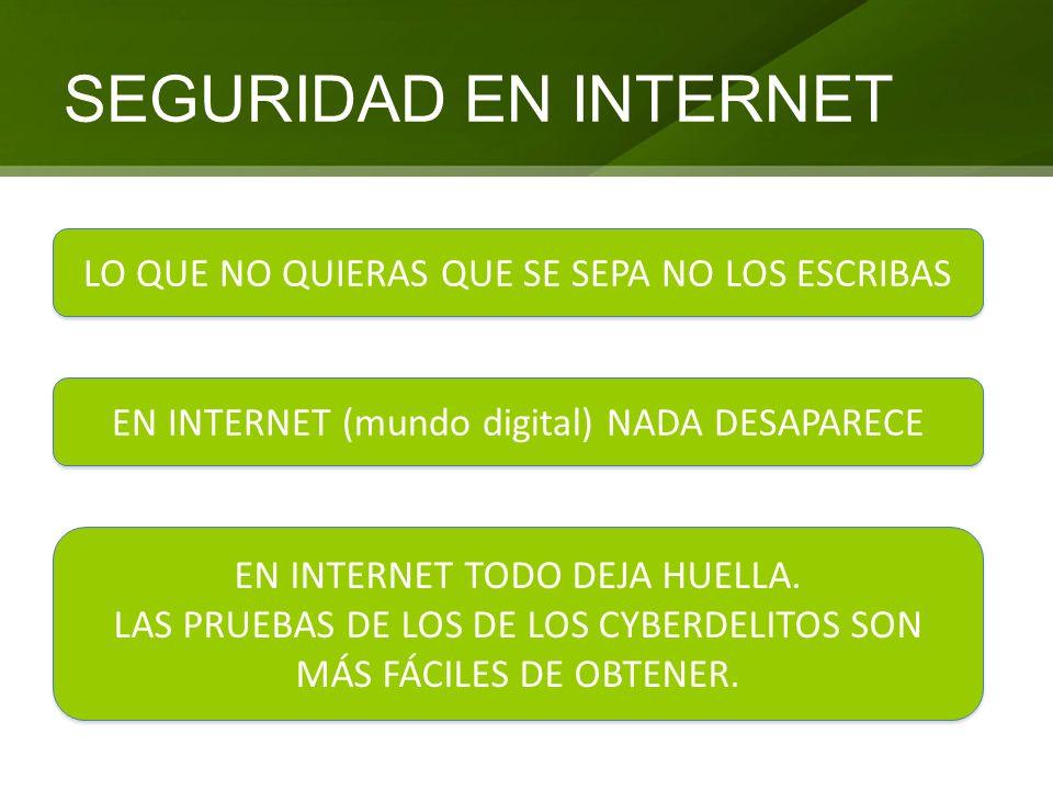 SEGURIDAD EN INTERNET LO QUE NO QUIERAS QUE SE SEPA NO LOS ESCRIBAS EN INTERNET (mundo digital) NADA DESAPARECE EN INTERNET TODO DEJA HUELLA. LAS PRUE