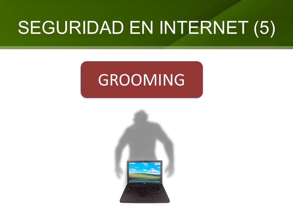 SEGURIDAD EN INTERNET (5) GROOMING