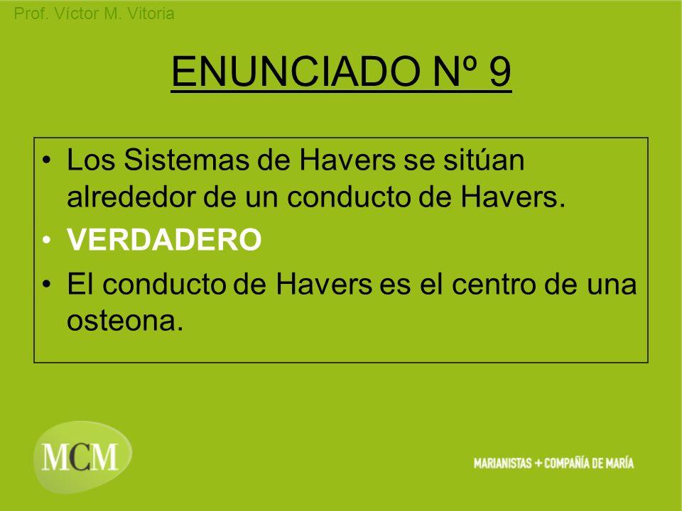 Prof. Víctor M. Vitoria ENUNCIADO Nº 9 Los Sistemas de Havers se sitúan alrededor de un conducto de Havers. VERDADERO El conducto de Havers es el cent