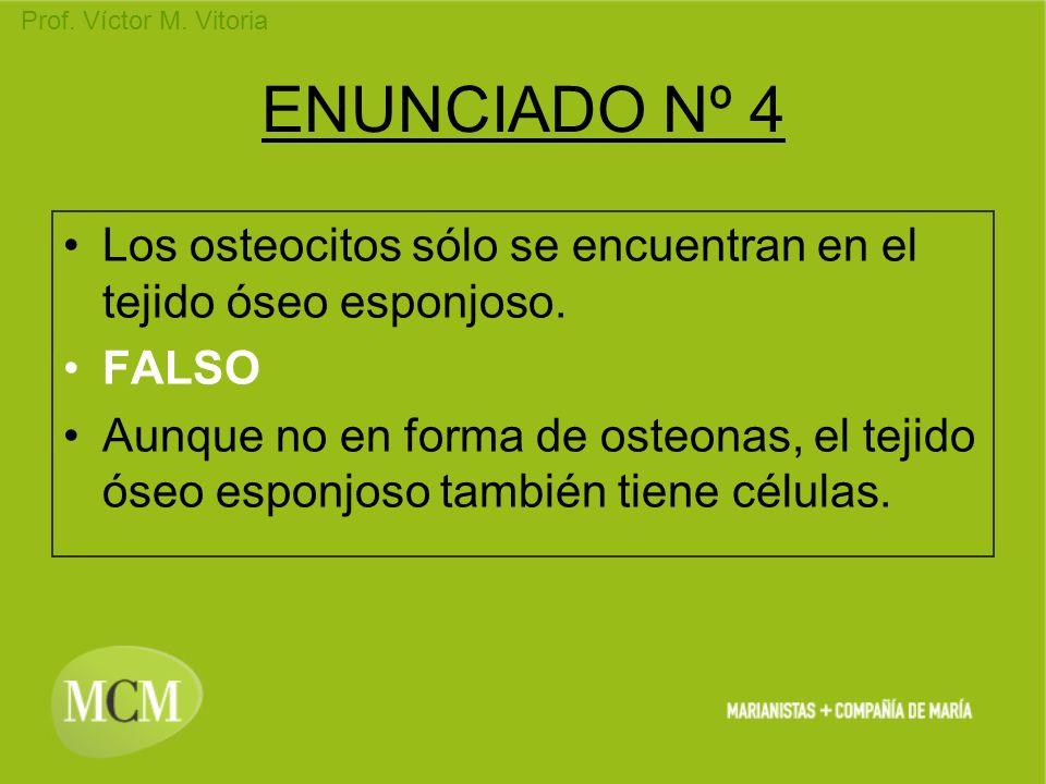 Prof. Víctor M. Vitoria ENUNCIADO Nº 4 Los osteocitos sólo se encuentran en el tejido óseo esponjoso. FALSO Aunque no en forma de osteonas, el tejido