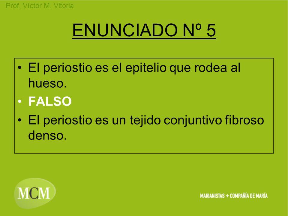 Prof. Víctor M. Vitoria ENUNCIADO Nº 5 El periostio es el epitelio que rodea al hueso. FALSO El periostio es un tejido conjuntivo fibroso denso.