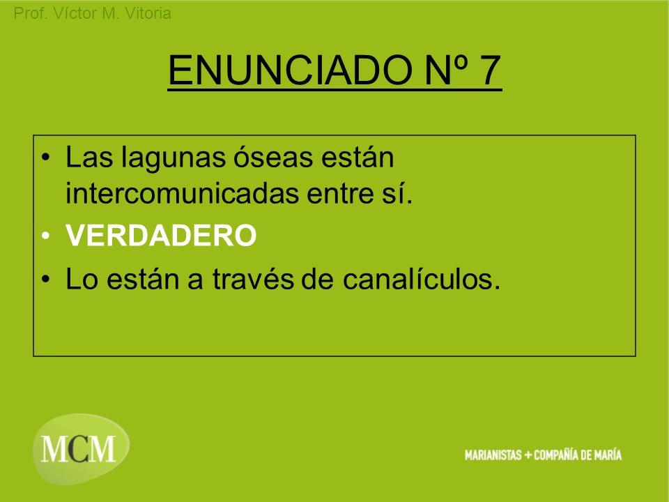 Prof. Víctor M. Vitoria ENUNCIADO Nº 7 Las lagunas óseas están intercomunicadas entre sí. VERDADERO Lo están a través de canalículos.