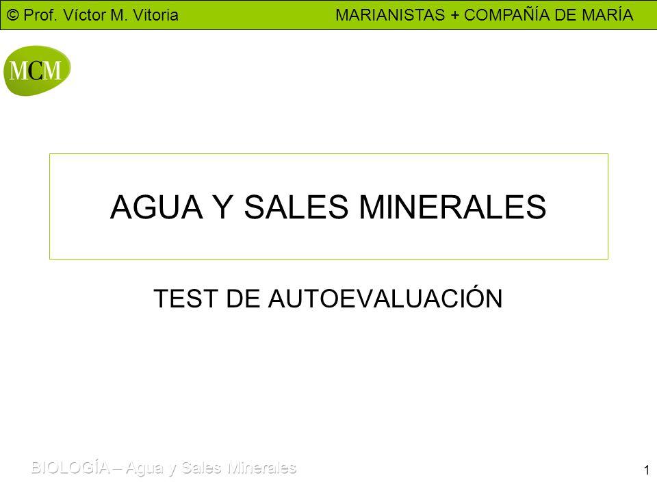 © Prof. Víctor M. Vitoria MARIANISTAS + COMPAÑÍA DE MARÍA 1 AGUA Y SALES MINERALES TEST DE AUTOEVALUACIÓN
