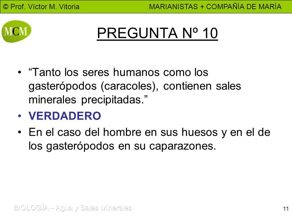 © Prof. Víctor M. Vitoria MARIANISTAS + COMPAÑÍA DE MARÍA 11 PREGUNTA Nº 10 Tanto los seres humanos como los gasterópodos (caracoles), contienen sales