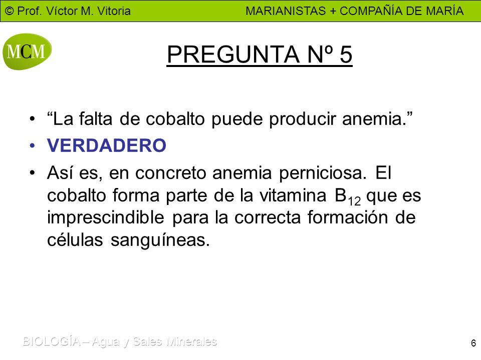 © Prof. Víctor M. Vitoria MARIANISTAS + COMPAÑÍA DE MARÍA 6 PREGUNTA Nº 5 La falta de cobalto puede producir anemia. VERDADERO Así es, en concreto ane