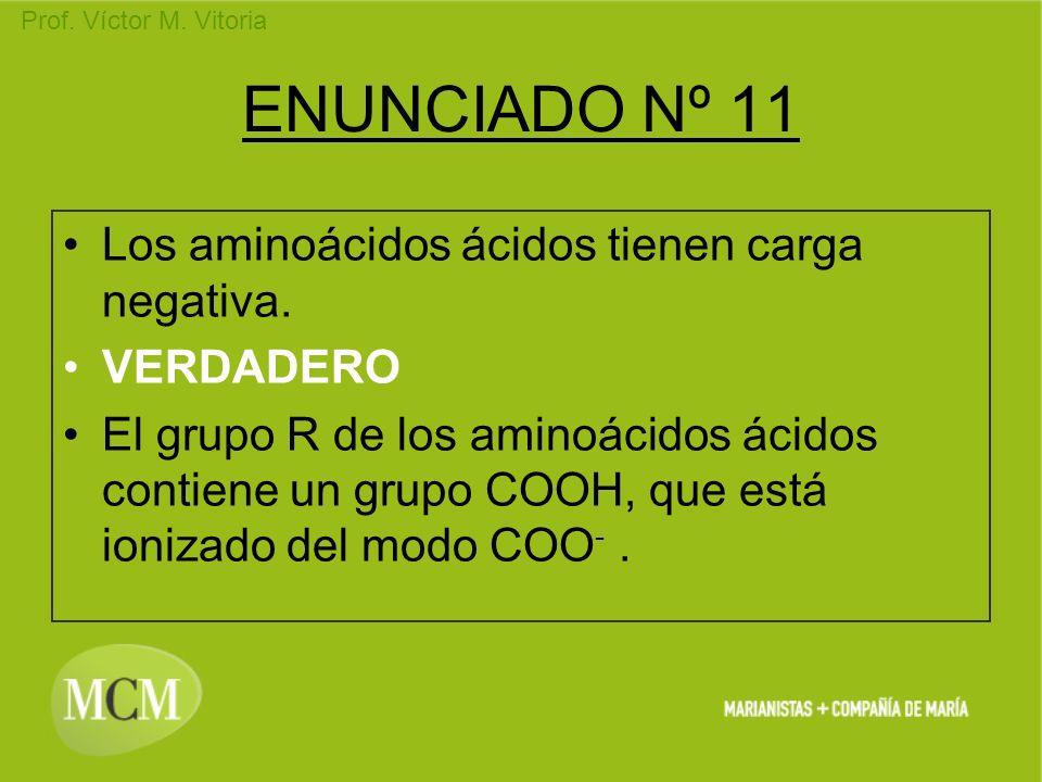 Prof. Víctor M. Vitoria ENUNCIADO Nº 11 Los aminoácidos ácidos tienen carga negativa. VERDADERO El grupo R de los aminoácidos ácidos contiene un grupo