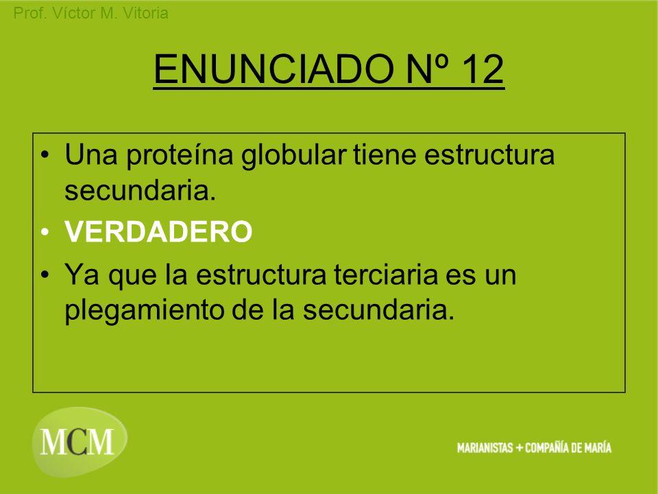 Prof. Víctor M. Vitoria ENUNCIADO Nº 12 Una proteína globular tiene estructura secundaria. VERDADERO Ya que la estructura terciaria es un plegamiento