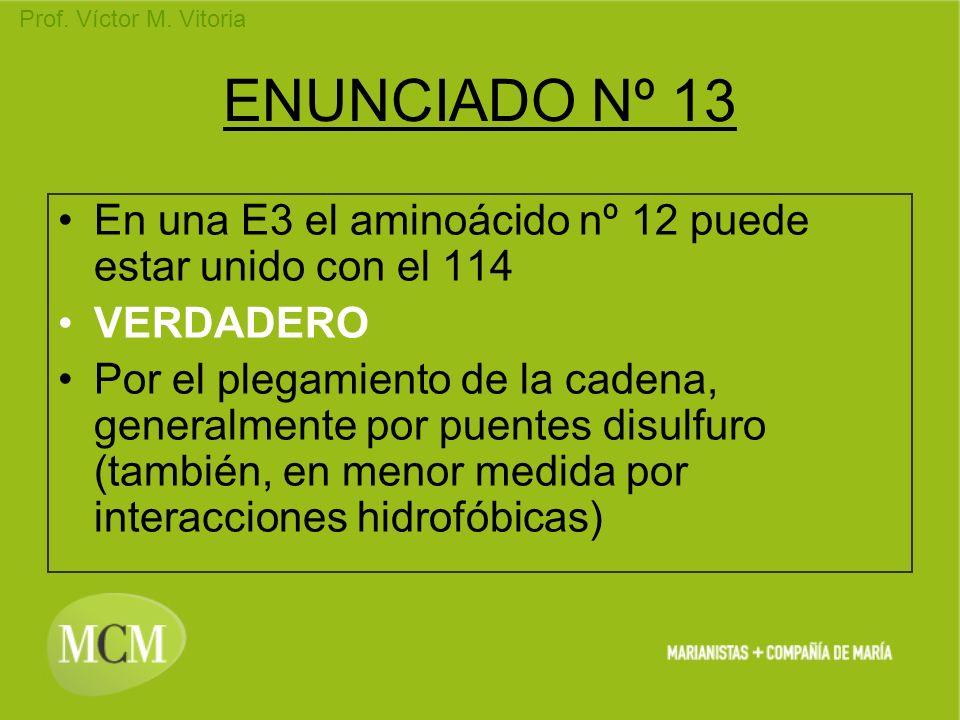 Prof. Víctor M. Vitoria ENUNCIADO Nº 13 En una E3 el aminoácido nº 12 puede estar unido con el 114 VERDADERO Por el plegamiento de la cadena, generalm
