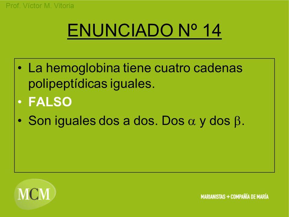 Prof. Víctor M. Vitoria ENUNCIADO Nº 14 La hemoglobina tiene cuatro cadenas polipeptídicas iguales. FALSO Son iguales dos a dos. Dos y dos.