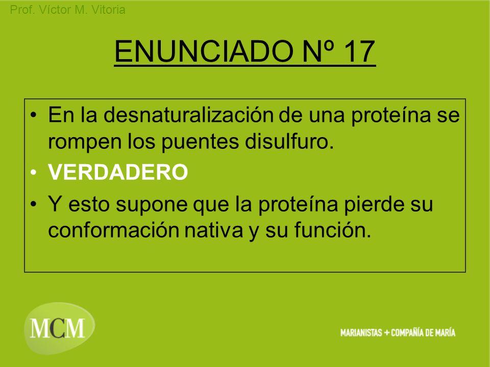 Prof. Víctor M. Vitoria ENUNCIADO Nº 17 En la desnaturalización de una proteína se rompen los puentes disulfuro. VERDADERO Y esto supone que la proteí