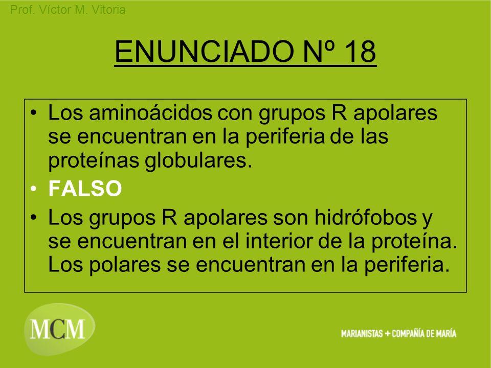 Prof. Víctor M. Vitoria ENUNCIADO Nº 18 Los aminoácidos con grupos R apolares se encuentran en la periferia de las proteínas globulares. FALSO Los gru