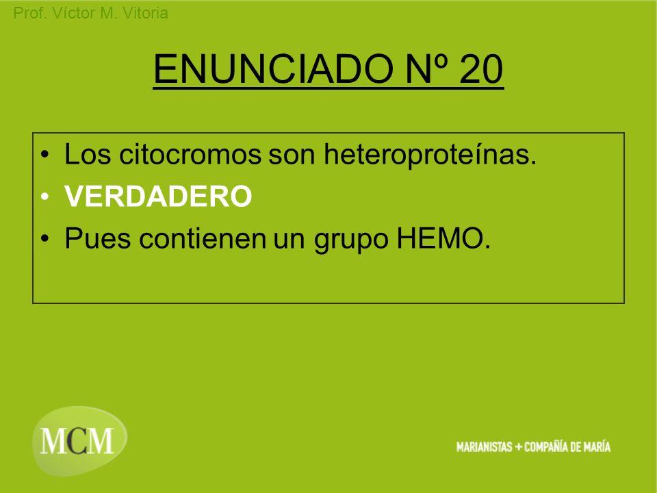 Prof. Víctor M. Vitoria ENUNCIADO Nº 20 Los citocromos son heteroproteínas. VERDADERO Pues contienen un grupo HEMO.