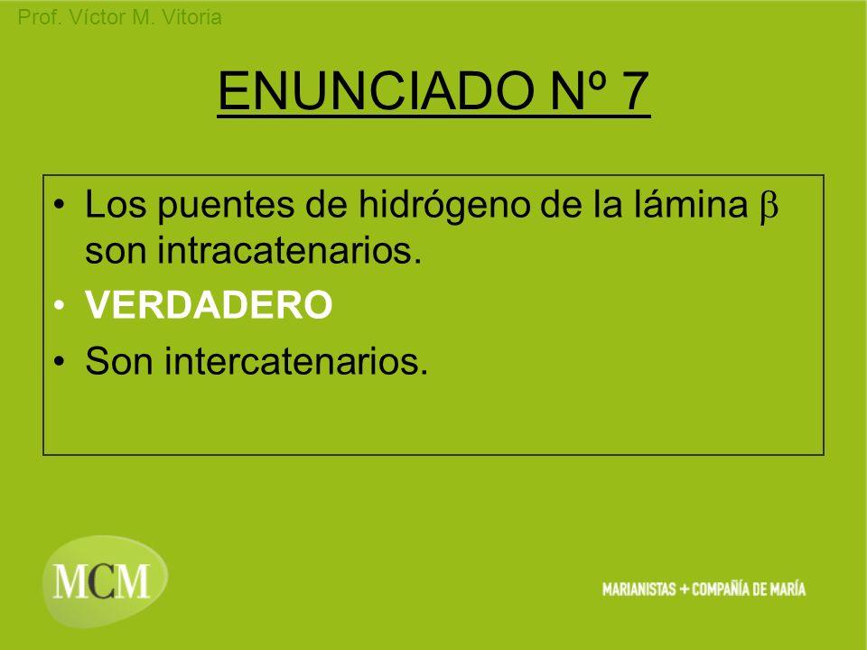 Prof. Víctor M. Vitoria ENUNCIADO Nº 7 Los puentes de hidrógeno de la lámina son intracatenarios. VERDADERO Son intercatenarios.