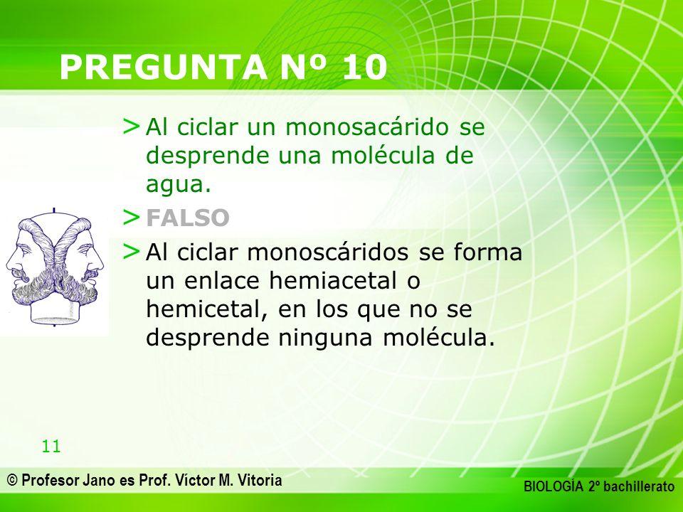 11 © Profesor Jano es Prof. Víctor M. Vitoria BIOLOGÍA 2º bachillerato PREGUNTA Nº 10 > Al ciclar un monosacárido se desprende una molécula de agua. >