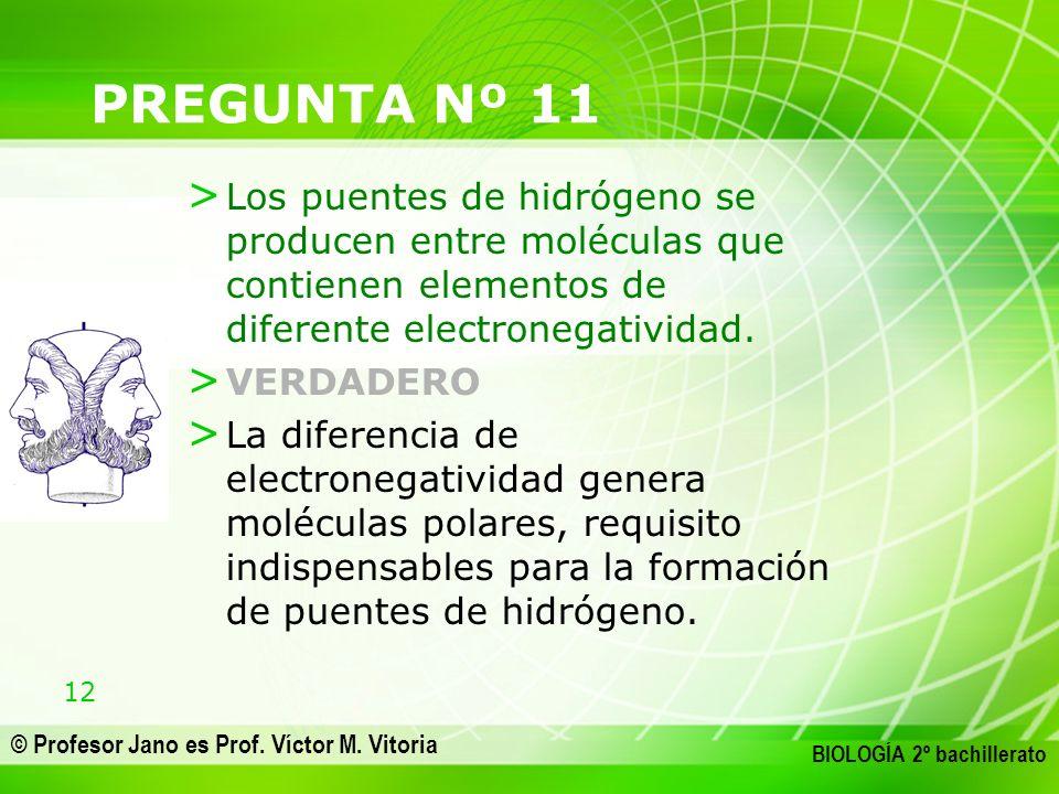 12 © Profesor Jano es Prof. Víctor M. Vitoria BIOLOGÍA 2º bachillerato PREGUNTA Nº 11 > Los puentes de hidrógeno se producen entre moléculas que conti